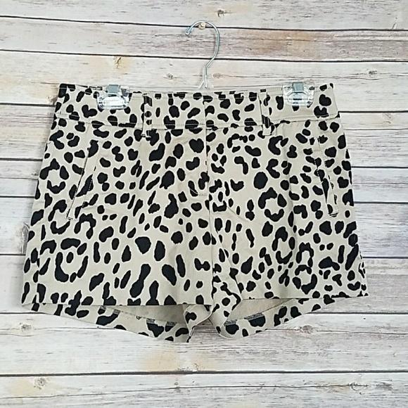 0ac639fdce22 Cache Pants - Cach'e Leopard Print Shorts
